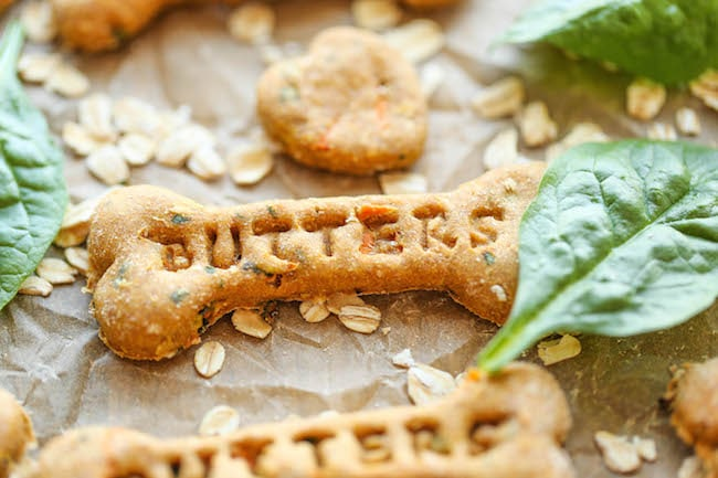 22 Homemade Dog Treat Recipes Your Pup Will Beg For Fun Loving