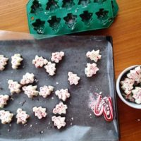Easy Christmas Bark Recipe DIY Gift Idea