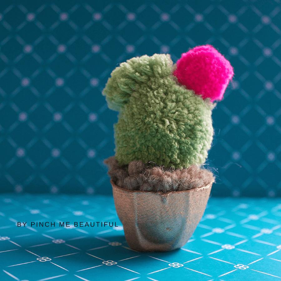 pom pom cactus