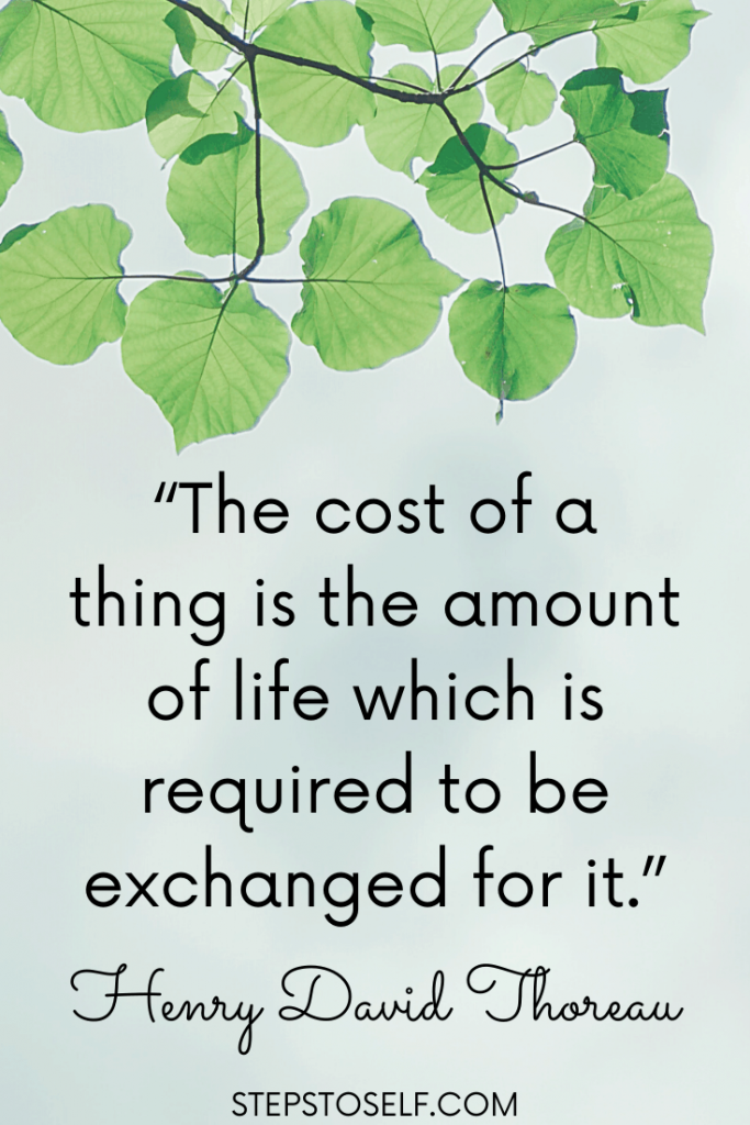 """""""The cost of a thing is the amount of life which is required to be exchanged for it."""" Henry David Thoreau"""